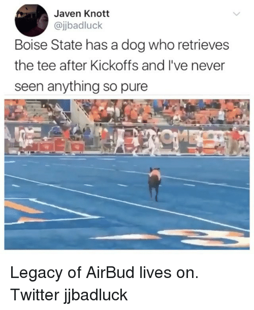 Memes, Twitter, and Legacy: Javen Knott  @jbadluck  Boise State has a dog who retrieves  the tee after Kickoffs and I've never  seen anything so pure Legacy of AirBud lives on. Twitter jjbadluck