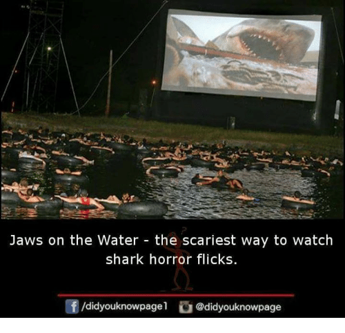 sharking: Jaws on the Water - the scariest way to watch  shark horror flicks  酎/didyouknowpagel。@didyouknowpage