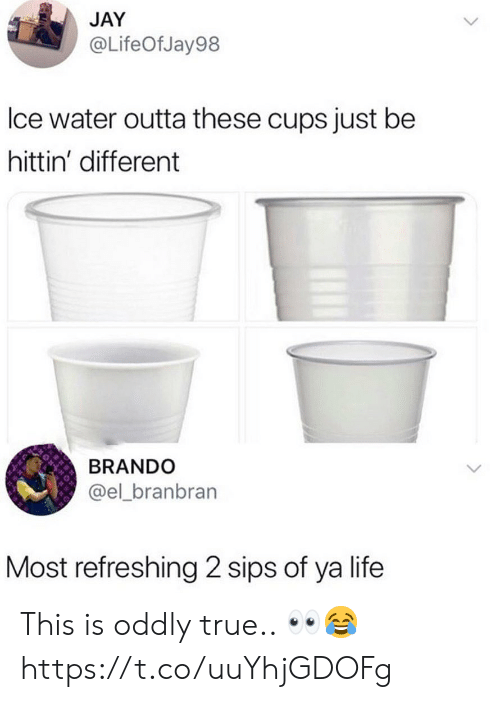Jay, Life, and True: JAY  @LifeOfJay98  lce water outta these cups just be  hittin' different  BRANDO  @el_branbran  Most refreshing 2 sips of ya life This is oddly true.. 👀😂 https://t.co/uuYhjGDOFg