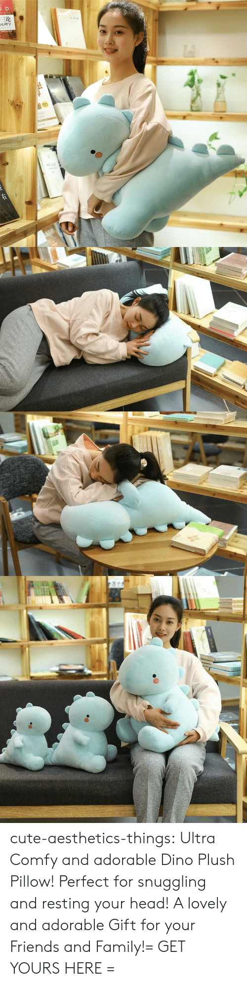 dino: JD  三论  laint  orld  TNAR  ww.e cute-aesthetics-things:  Ultra Comfy and adorable Dino Plush Pillow! Perfect for snuggling and resting your head! A lovely and adorable Gift for your Friends and Family!= GET YOURS HERE =