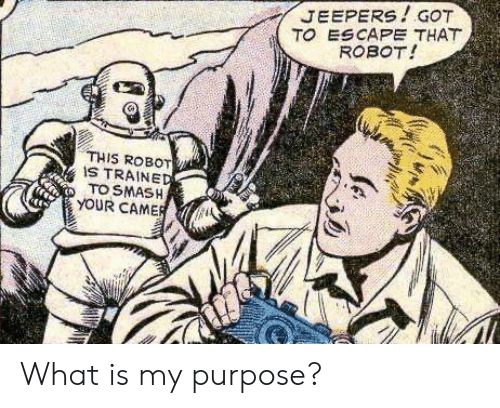 Smashing, What Is, and Got: JEEPERS!GOT  TO ESCAPE THAT  ROBOT!  THIS ROBOT  IS TRAINED  TO SMASH  YOUR CAMER What is my purpose?