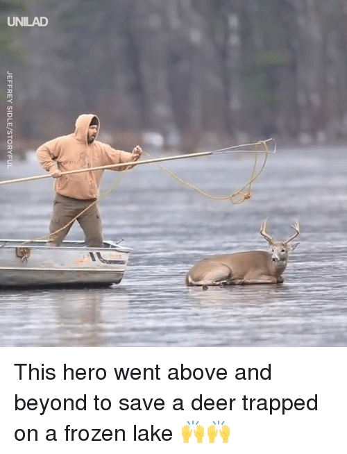 Dank, Deer, and Frozen: JEFFREY SIDLE/STORYFUL This hero went above and beyond to save a deer trapped on a frozen lake  🙌🙌
