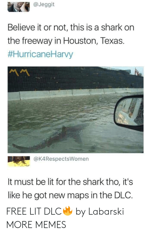 Believe It: @Jeggit  Believe it or not, this is a shark on  the freeway in Houston, Texas.  #HurricaneHarvy  @K4RespectsWomen  It must be lit for the shark tho, it's  like he got new maps in the DLC. FREE LIT DLC🔥 by Labarski MORE MEMES