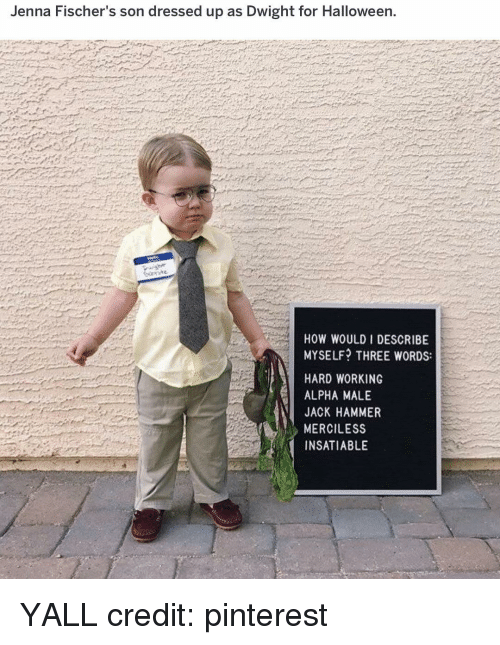 Halloween, Memes, and Pinterest: Jenna Fischer's son dressed up as Dwight for Halloween.  HOW WOULD I DESCRIBE  MYSELF? THREE WORDS:  HARD WORKING  ALPHA MALE  JACK HAMMER  MERCILESS  INSATIABLE YALL credit: pinterest
