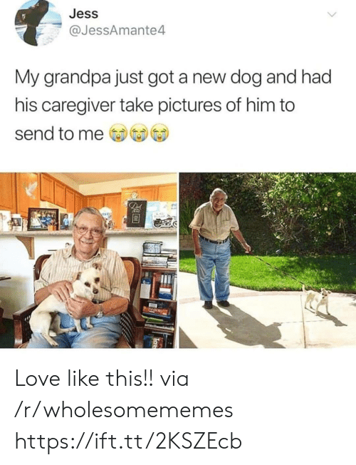 Love, Grandpa, and Pictures: Jess  @JessAmante4  My grandpa just got a new dog and had  his caregiver take pictures of him to  send to me  De Love like this!! via /r/wholesomememes https://ift.tt/2KSZEcb