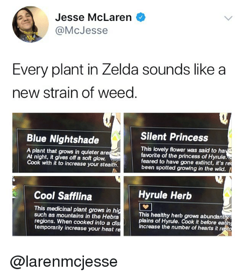 Memes, Weed, and Blue: Jesse McLaren  @McJess  Every plant in Zelda sounds like a  new strain of weed  Silent Princess  Blue Nightshade  A plant that grows in quieter are  At night, it gives off a soft glow.  Cook with it to increase your stealth.  This lovely flower was said to ha  favorite of the princess of Hyrule.  feared to have gone extinct, it's re  been spotted growing in the wild.  Cool Safflina  Hyrule Herb  This medicinal plant grows in hig  such as mountains in the Hebra  regions. When cooked into a dis  temporarily increase your heat re  This healthy herb grows abundan  plains of Hyrule. Cook it before eating  increase the number of hearts it resto @larenmcjesse
