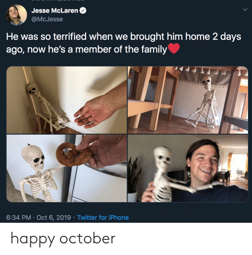 Family, Iphone, and Twitter: Jesse McLaren  @McJesse  He was so terrified when we brought him home 2 days  ago, now he's a member of the family  6:34 PM Oct 6, 2019 Twitter for iPhone  Tooses happy october