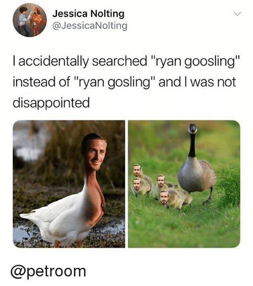 "Gosling: Jessica Nolting  @JessicaNolting  I accidentally searched ""ryan goosling""  instead of ""ryan gosling"" and I was not  disappointed @petroom"