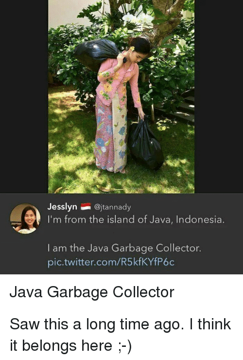 the island: Jesslyn@jtannady  I'm from the island of Java, Indonesia  I am the Java Garbage Collector.  pic.twitter.com/R5kfKYfP6c  Java Garbage Collector Saw this a long time ago. I think it belongs here ;-)
