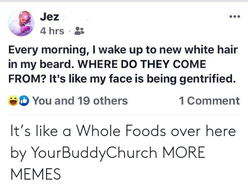 Beard, Dank, and Memes: Jez  4 hrs  Every morning, I wake up to new white hair  in my beard. WHERE DO THEY COME  FROM? It's like my face is being gentrified  You and 19 others  1 Comment It's like a Whole Foods over here by YourBuddyChurch MORE MEMES