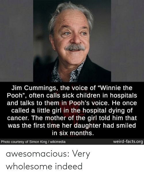 "Cancer: Jim Cummings, the voice of ""Winnie the  Pooh"", often calls sick children in hospitals  and talks to them in Pooh's voice. He once  called a little girl in the hospital dying of  cancer. The mother of the girl told him that  was the first time her daughter had smiled  in six months.  weird-facts.org  Photo courtesy of Simon King / wikimedia awesomacious:  Very wholesome indeed"