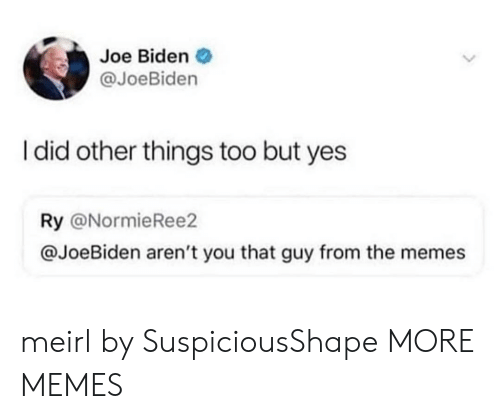 Joe Biden: Joe Biden  @JoeBiden  I did other things too but yes  Ry @NormieRee2  @JoeBiden aren't you that guy from the memes meirl by SuspiciousShape MORE MEMES