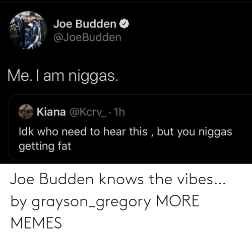 Budden: Joe Budden knows the vibes… by grayson_gregory MORE MEMES