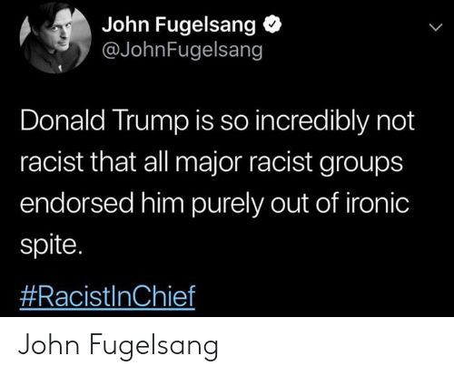 Donald Trump, Ironic, and Trump: John Fugelsang  @JohnFugelsang  Donald Trump is so incredibly not  racist that all major racist groups  endorsed him purely out of ironic  spite.  John Fugelsang