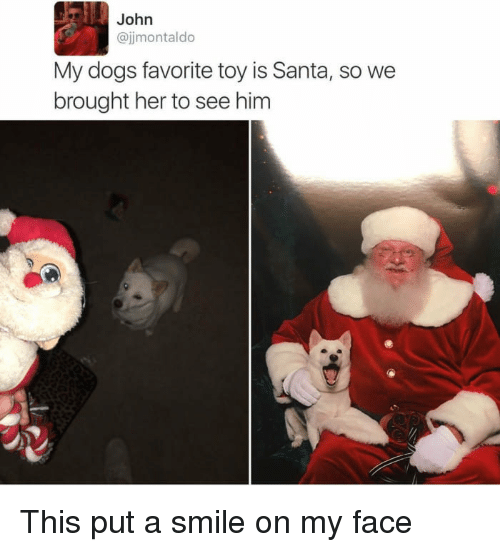 Dogs, Santa, and Smile: John  @jjmontaldo  My dogs favorite toy is Santa, so we  brought her to see him This put a smile on my face