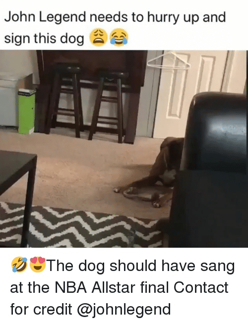 Allstar: John Legend needs to hurry up and  sign this dog 🤣😍The dog should have sang at the NBA Allstar final Contact for credit @johnlegend
