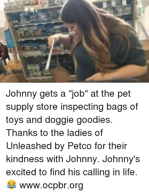 """Johnny Johnny: Johnny gets a """"job"""" at the pet supply store inspecting bags of toys and doggie goodies. Thanks to the ladies of Unleashed by Petco for their kindness with Johnny.   Johnny's excited to find his calling in life. 😂  www.ocpbr.org"""