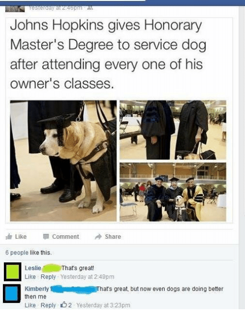 johns hopkins: Johns Hopkins gives Honorary  Master's Degree to service dog  after attending every one of his  owner's classes  dr Like Comment Share  6 people like this.  Thats great!  Leslie  Like Reply Yesterday at 2:49pm  KimberlyThats great but now even dogs are doing better  then me  Like Reply 2 Yesterday at 3:23pm
