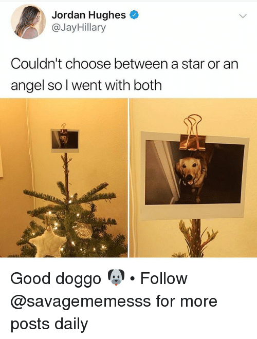 Memes, Angel, and Good: Jordan Hughes  @JayHillary  Couldn't choose between a star or an  angel so l went with both Good doggo 🐶 • Follow @savagememesss for more posts daily