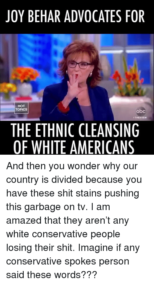 Abc, Memes, and Shit: JOY BEHAR ADVOCATES FOR  HOT  TOPICS  abc  THEVIEW  THE ETHNIC CLEANSING  OF WHITE AMERICANS And then you wonder why our country is divided because you have these shit stains pushing this garbage on tv. I am amazed that they aren't any white conservative people losing their shit. Imagine if any conservative spokes person said these words???