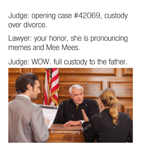 Pronounce Meme: Judge: opening case #42069, custody  over divorce.  Lawyer: your honor, she is pronouncing  memes and Mee Mees.  Judge: WOW. full custody to the father.  @dankmemesgang