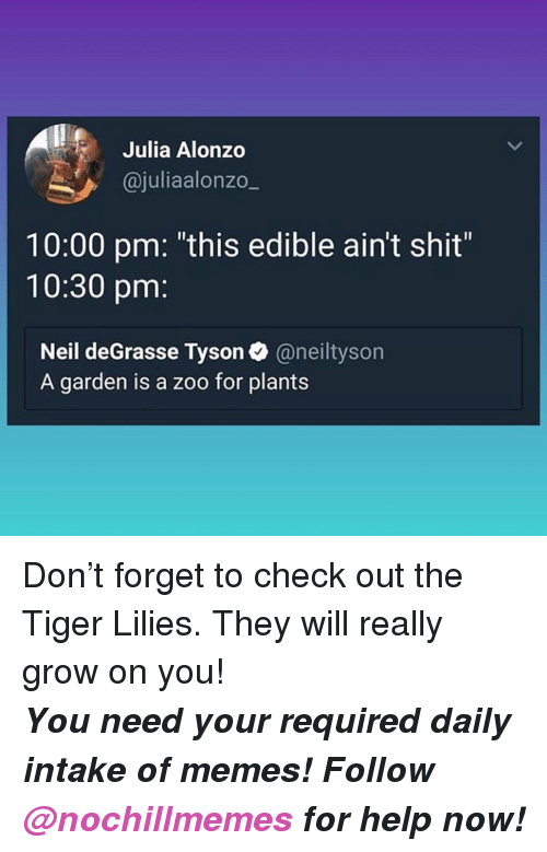 """lilies: Julia Alonzo  @juliaalonzo_  10:00 pm: """"this edible ain't shit""""  10:30 pm:  Neil deGrasse Tyson@neiltyson  A garden is a zoo for plants <p>Don't forget to check out the Tiger Lilies. They will really grow on you!</p><p><b><i>You need your required daily intake of memes! Follow <a>@nochillmemes</a> for help now!</i></b><br/></p>"""