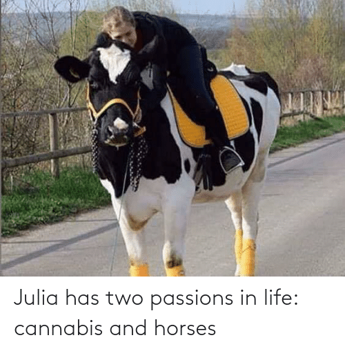 two: Julia has two passions in life: cannabis and horses