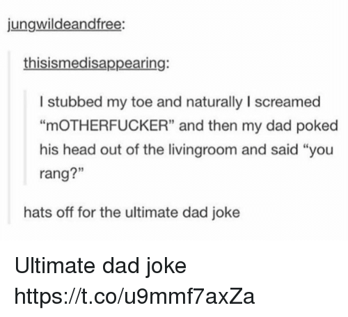 "Dads Jokes: jungwildeandfree:  thisismedisappearing:  I stubbed my toe and naturally I screamed  ""mOTHERFUCKER"" and then my dad poked  his head out of the livingroom and said ""you  rang?""  3  rang?""  hats off for the ultimate dad joke Ultimate dad joke https://t.co/u9mmf7axZa"