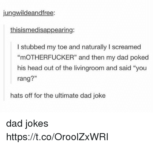 "Dads Jokes: jungwildeandfree:  thisismedisappearing:  I stubbed my toe and naturally I screamed  ""mOTHERFUCKER"" and then my dad poked  his head out of the livingroom and said ""you  rang?""  hats off for the ultimate dad joke dad jokes https://t.co/OroolZxWRI"