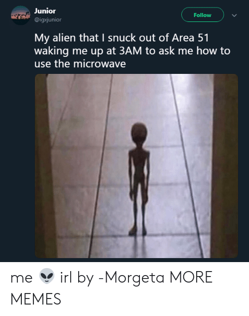 Dank, Memes, and Target: Junior  Follow  @igxjunior  My alien that I snuck out of Area 51  waking me up at 3AM to ask me how to  use the microwave me 👽 irl by -Morgeta MORE MEMES