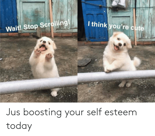 self: Jus boosting your self esteem today