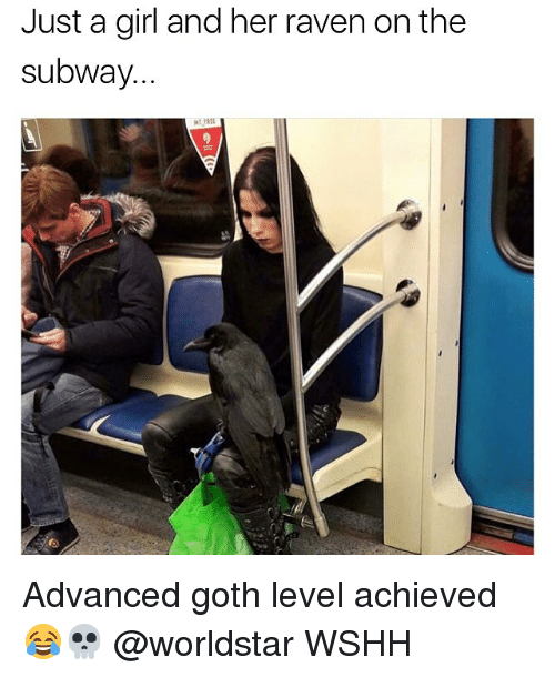 ravenous: Just a girl and her raven on the  subway. Advanced goth level achieved 😂💀 @worldstar WSHH