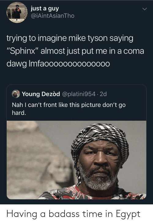 """Egypt: just a guy  @iAintAsianTho  trying to imagine mike tyson saying  """"Sphinx"""" almost just put me in a coma  dawg Imfaooo00000000000  Young Dezòd @platini954 · 2d  Nah I can't front like this picture don't go  hard. Having a badass time in Egypt"""