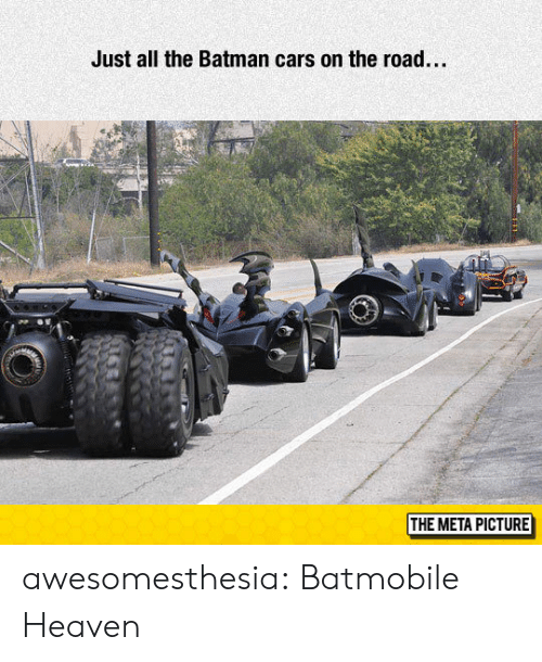 the batman: Just all the Batman cars on the road...  THE META PICTURE awesomesthesia:  Batmobile Heaven