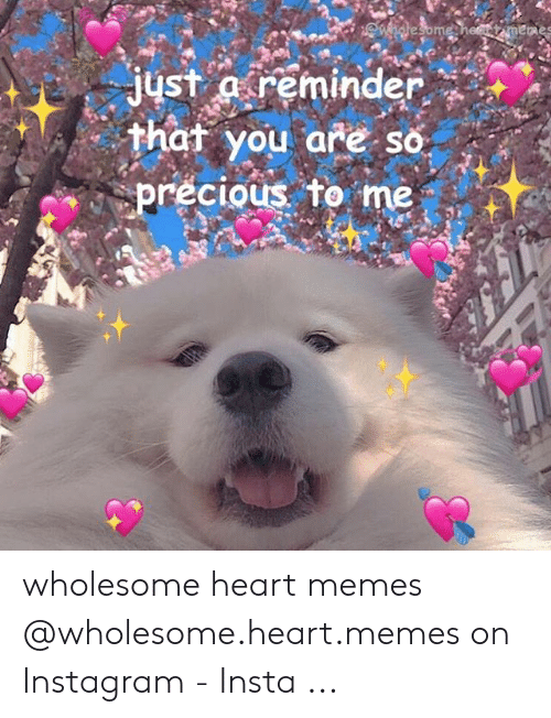 Instagram, Memes, and Precious: just areminder  hat you are so  precious to me wholesome heart memes @wholesome.heart.memes on Instagram - Insta ...
