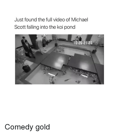 Michael Scott, Michael, and Video: Just found the full video of Michael  Scott falling into the koi pond  10:26:21 2 Comedy gold