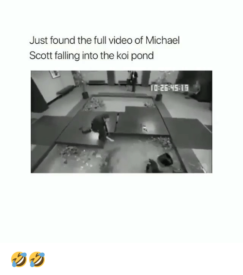 Memes, Michael Scott, and Michael: Just found the full video of Michael  Scott falling into the koi pond  10:26:45 15 🤣🤣