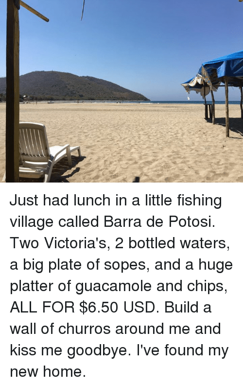 sope: Just had lunch in a little fishing village called Barra de Potosi. Two Victoria's, 2 bottled waters, a big plate of sopes, and a huge platter of guacamole and chips, ALL FOR $6.50 USD.   Build a wall of churros around me and kiss me goodbye. I've found my new home.