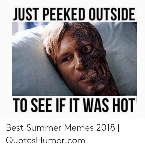 Summer Memes 2018: JUST PEEKED OUTSIDE  TO SEE IF IT WAS HOT Best Summer Memes 2018 | QuotesHumor.com