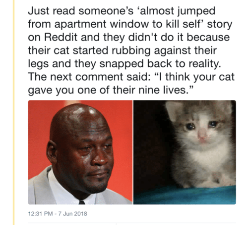"""Reddit, Jumped, and Reality: Just read someone's 'almost jumped  from apartment window to kill self' story  on Reddit and they didn't do it because  their cat started rubbing against their  legs and they snapped back to reality.  The next comment said: """"l think your cat  gave you one of their nine lives.""""  2:31 PM-7 Jun 2018"""