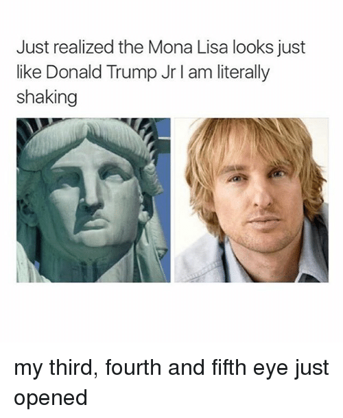 Donald Trump, Memes, and Mona Lisa: Just realized the Mona Lisa looks just  like Donald Trump Jr I am literally  shaking my third, fourth and fifth eye just opened