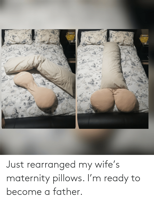 pillows: Just rearranged my wife's maternity pillows. I'm ready to become a father.