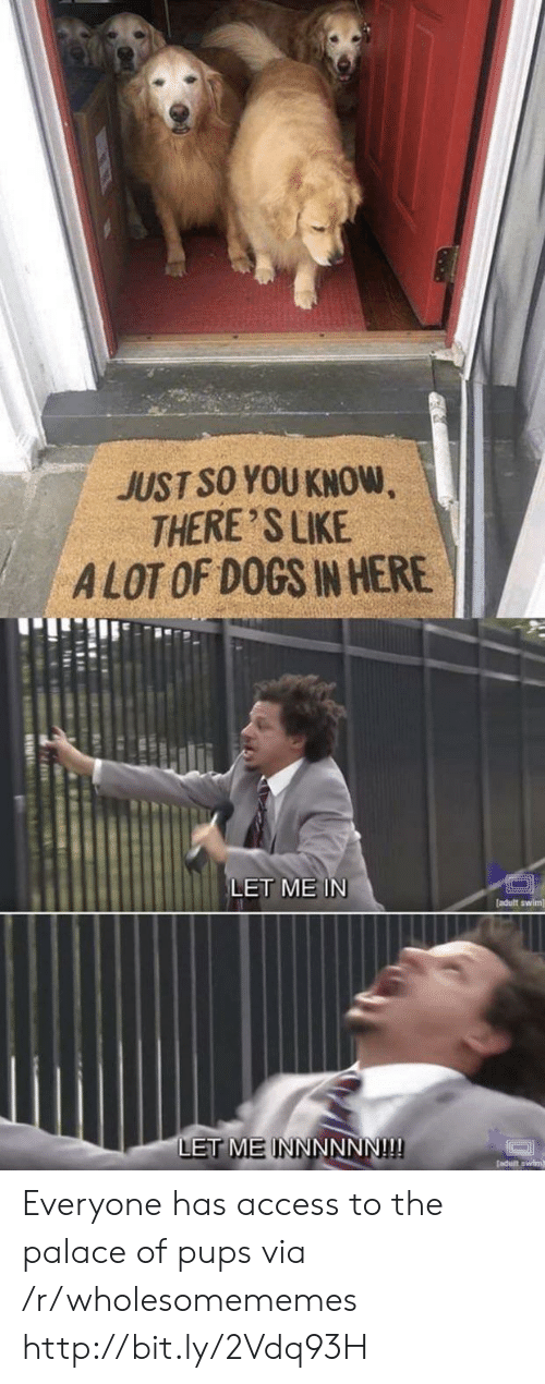 let me in: JUST SO YOU KNOW  THERE 'S LIKE  ALOT OF DOGS IN HERE  LET ME IN  [adult swim]  LET MEINNNNNN!!! Everyone has access to the palace of pups via /r/wholesomememes http://bit.ly/2Vdq93H