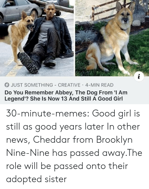 Brooklyn: JUST SOMETHING CREATIVE 4-MIN READ  Do You Remember Abbey, The Dog From I Am  Legend'? She Is Now 13 And Still A Good Girl 30-minute-memes:  Good girl is still as good years later  In other news, Cheddar from Brooklyn Nine-Nine has passed away.The role will be passed onto their adopted sister