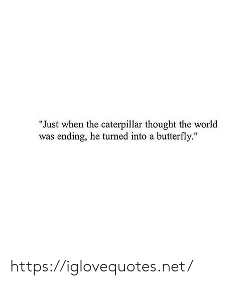 "caterpillar: ""Just when the caterpillar thought the world  was ending, he turned into a butterfly."" https://iglovequotes.net/"