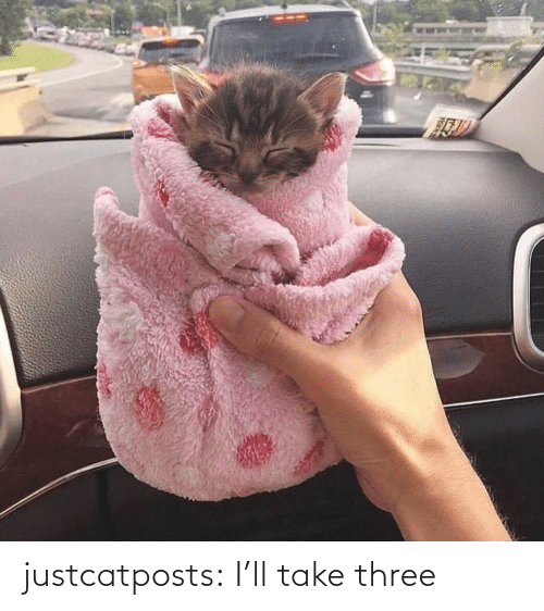ill: justcatposts:  I'll take three