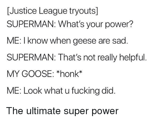 Justice League: [Justice League tryouts]  SUPERMAN: What's your power?  ME: I know when geese are sad  SUPERMAN: That's not really helpful  MY GOOSE: *honk*  ME: Look what u fucking did. The ultimate super power