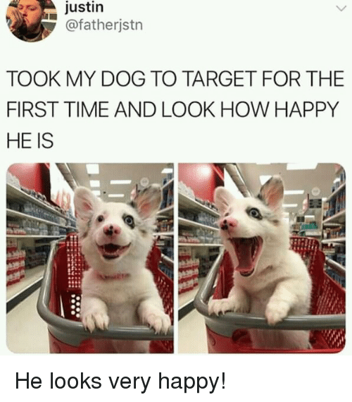 Target, Happy, and Time: justin  @fatherjstn  TOOK MY DOG TO TARGET FOR THE  FIRST TIME AND LOOK HOW HAPPY  HE IS He looks very happy!