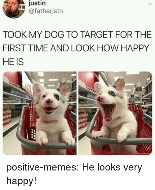 Memes, Target, and Tumblr: justin  @fatherjstn  TOOK MY DOG TO TARGET FOR THE  FIRST TIME AND LOOK HOW HAPPY  HE IS positive-memes:  He looks very happy!