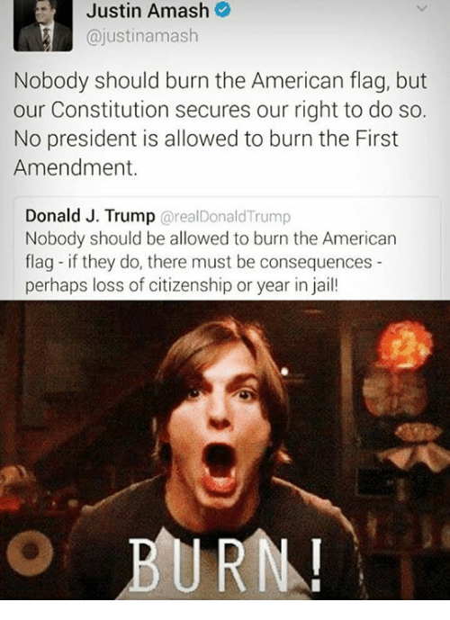 Jail, Memes, and American Flag: Justin Justin Amash  ajustinamash  Nobody should burn the American flag, but  our Constitution secures our right to do so.  No president is allowed to burn the First  Amendment.  Donald J. Trump  areal Donald Trump  Nobody should be allowed to burn the American  flag-if they do, there must be consequences  perhaps loss of citizenship or year in jail!  BURN!